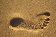 Ecologische footprint